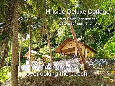 Hillside Deluxe Cottage with Solar light and fan, Private bathroom and Terrace